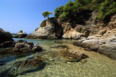 Greece - Bay in Skiathos Island