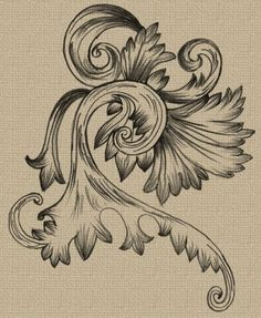 hand drawn swirl ornaments free vector and photoshop brush