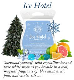 Scentsy January 2015 Scent of the month is ICE HOTEL : Surround yourself with crystalline Ice and pure white snow, as you breathe in a cool magical fragrance of blue mint, arctic pine, and winter citrus.