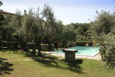 Swimming-pool sunshine. www.marilenalacasella.com