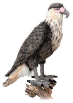 Hansa 4884 Eagle Mexican