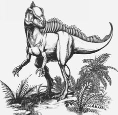 Becklespinax: lower cretaceous period, likes meat, 5 m long