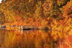 A Fall Morning filled with Grace Photo by madeline p. — National Geographic Your Shot