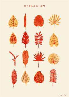 ++ Herbarium - Chloé Chapeaublanc for NORDEN