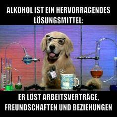 Alkohol ist ein hervoragendes Lösungsmittel