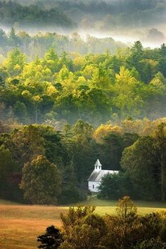 Tennessee Homesick Blues - Cades Cove