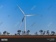 Wind turbine in a Kansas field with trees