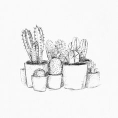 An overview of all the inkylines drawings and sketches. Easy Pencil Drawings, Art Drawings, Flower Outline, Bullet Journal School, Sketch Inspiration, Plant Illustration, Art Inspo, Creativity, Doodles