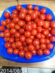 Tomatoberry cherry tomatoes