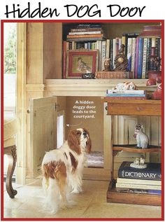Charles Faudree's brilliant custom dog door concealed in a lower bookcase as seen in Southern Living. Smart in 2 other ways- carpeted in a cheetah print to help clean dirty paws / hide dirt and you can close the cabinet if you have guests, etc. where the dogs can come inside but not in your interior.