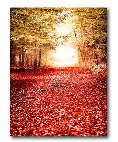 Another great find on #zulily! Tree Line Wrapped Canvas #zulilyfinds