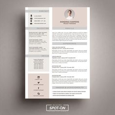 Professional cv template two page resume cover letter advice professional cv template two page resume cover letter advice printable for word the pascal professional resume template yelopaper Choice Image