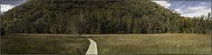 An old wooden pathway creates a pathway to distant wooded hills, Kuringai Chase national Park, Australia. Photo: Ross Duncan https://plus.google.com/+XMediaStudioValentin/posts/Cv8uQJNa9o5