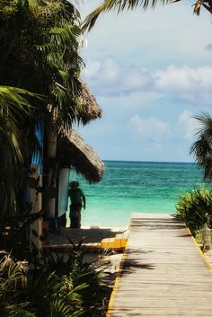 Vue sur la plage, voyage ensoleillé à Cuba