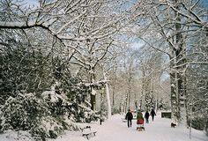 Samen buiten, samen genieten van de sneeuw. Een ondergesneeuwde Zocher parkbank.