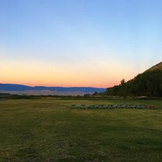 Road Trip | Jackson, WY and Yellowstone