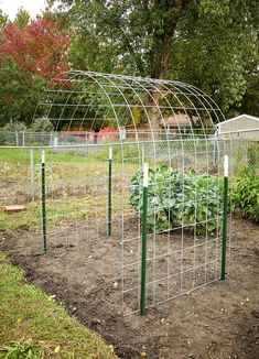 Make an Eye-Catching Bean Trellis for Your Garden : DIY Bean Trellis Bean plants climb and cover anything in their path, but can sometimes look messy and tangled. Try making this arched bean trellis for your garden… Raised Garden, Vegetable Garden Design, Plants, Front Garden Design, Vegetable Garden Trellis, Small Garden Design, Garden Arches, Outdoor Gardens, Garden Arbor
