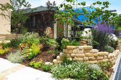 アンティークレンガの花壇 ガーデニング