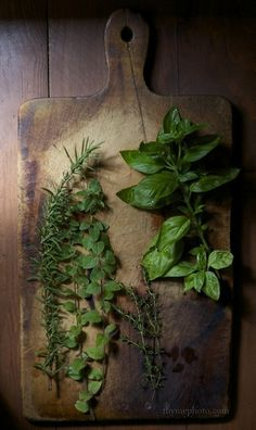 Parsley, Page, Rosemary & Thyme