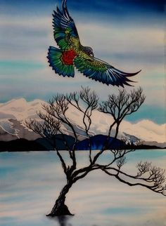 Kea Lake Wanaka beautiful art print by New Zealand artist Lake Wanaka, School Murals, May Designs, Kiwiana, Panel Art, Outdoor Art, Silk Painting, Bird Art, Garden Art