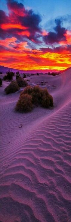 Sunrise at sand dunes in Death valley California USA