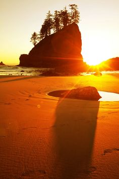 Shi Shi Beach, where campers flock every summer to see the Point of Arches. The Point of Arches is a National Natural Landmark and rightfully so! It includes 30 sea stacks, some of which have arches or caves carved into them, and most are big enough to have trees growing on top. It's a pretty spectacular sight, especially during sunset!