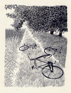 Bicycles in the Green Grass Lane, Sketching Graphic