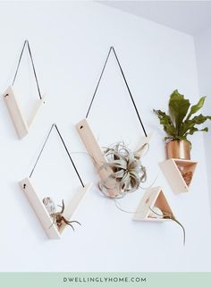 Set of 5 Handmade Triangle Shelves Stunning set of 5 solid pine shelves handmade by Mezcla Designs. Each shelf is hung with leather lace, with the color of your choice: black or cognac. These are perfect for displaying your small potted plants and air pla Pine Shelves, Diy Hanging Shelves, Black Shelves, Decorative Wall Shelves, Floating Shelves, Plants On Shelves, Small Wall Shelf, Small Wall Decor, Black Wall Decor