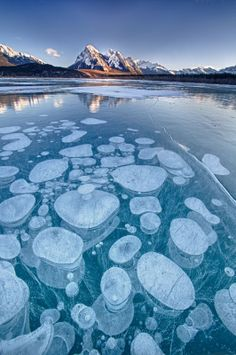 Abraham Lake, an artificial lake on North Saskatchewan River in western Alberta, Canada