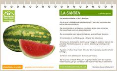 Conoce las grandes bondades de la sandía, sus beneficios, sus nutrientes y sus grandes propiedades.