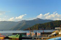 Duck ridding at Kawaguchi Lake, Yamanashi prefecture Japan