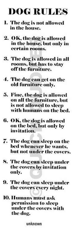 10 Dog Rules In The House favorite-quotes-and-pictures