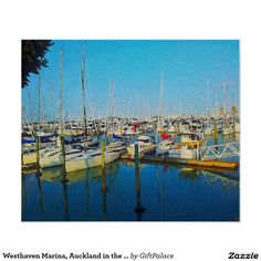 Westhaven Marina, Auckland in the Evening Light. Poster