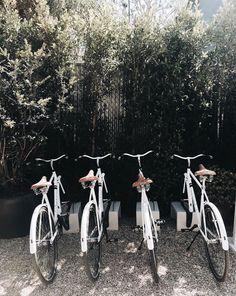White bikes in a row