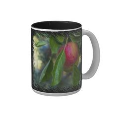 Apples 3 on Black Coffee Mugs from Florals by Fred #zazzle #gift