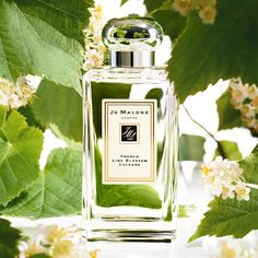 Jo Malone French Lime Blossom. I change my scents with the season and this is my favorite for Spring! - Marta