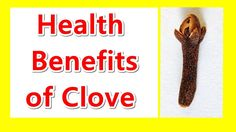 """Health Benefits of Clove  Daily Health Tips   Health Tips ------------------------------------------------------------------------------------------------------------------------------------------------------------------------------------------------ """"Health Benefits of Clove"""" Cloves offer numerous medical advantages some of which incorporate giving guide in absorption having antimicrobial properties battling against malignancy ensuring the liver boosting the insusceptible framework…"""