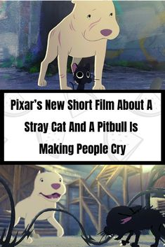 Pixar's New Short Film About A Stray Cat And A Pitbull Is Making People Cry... #Pixar #Emotional #Films #Interesting #Entertainment