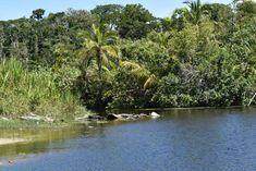 Cahuita National Park. Caribbean Coast Costa Rica. Travel, itinerary.