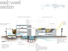 Urban Roots is a Building that Facilitates Water Access through Biomimetic Solutions