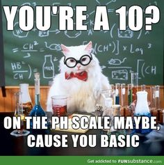 The Absolute Best Of Chemistry CatYou can find Chemistry cat and more on our website.The Absolute Best Of Chemistry Cat Chemistry Cat, Chemistry Teacher, Chemistry Tattoo, Science Cat, Science Puns, Science Experiments, Science Gifts, Science Ideas, Funny Science Memes