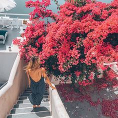 Santorini, Greece  ✧  ✧  ✧  ✧  ✧  #greecestagram #instagreece #visitgreece #ilovegreece #greecelovers #santoriniisland #greecelover_gr #travel_greece