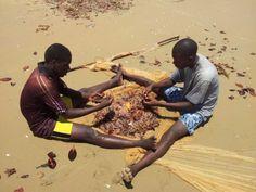 Mi sarei fermato ore a guardarli lavorare.... http://www.orizzonteviaggi.blogspot.it/search/label/Kenya