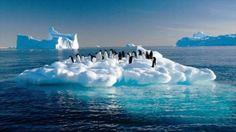 Extremo calor del ártico desconcierta a Científicos - https://infouno.cl/extremo-calor-del-artico-desconcierta-a-cientificos/