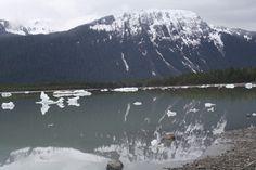 Mendenhall Glacier Mount Rainier, Europe, Mountains, Nature, Travel, Art, Art Background, Viajes, Kunst