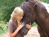 Ida ja Vördur Horses, Animals, Animales, Animaux, Animal, Animais, Horse
