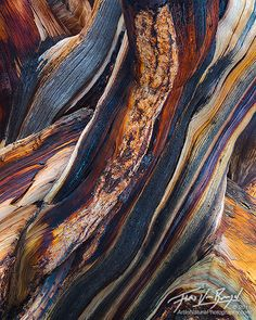alpiine trail abstract print - Google Search