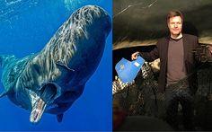 Cachalotes muertos en Alemania: la autopsia reveló que sus estómagos se encontraban llenos de residuos plásticos - http://verdenoticias.org/index.php/blog-noticias-contaminacion/196-cachalotes-muertos-en-alemania-la-autopsia-revelo-que-sus-estomagos-se-encontraban-llenos-de-residuos-plasticos