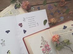 Flower Poetry, Dried Flowers, Photo And Video, Instagram, Flower Preservation, Dry Flowers
