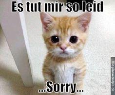 Es tut mir so leid...SORRY...